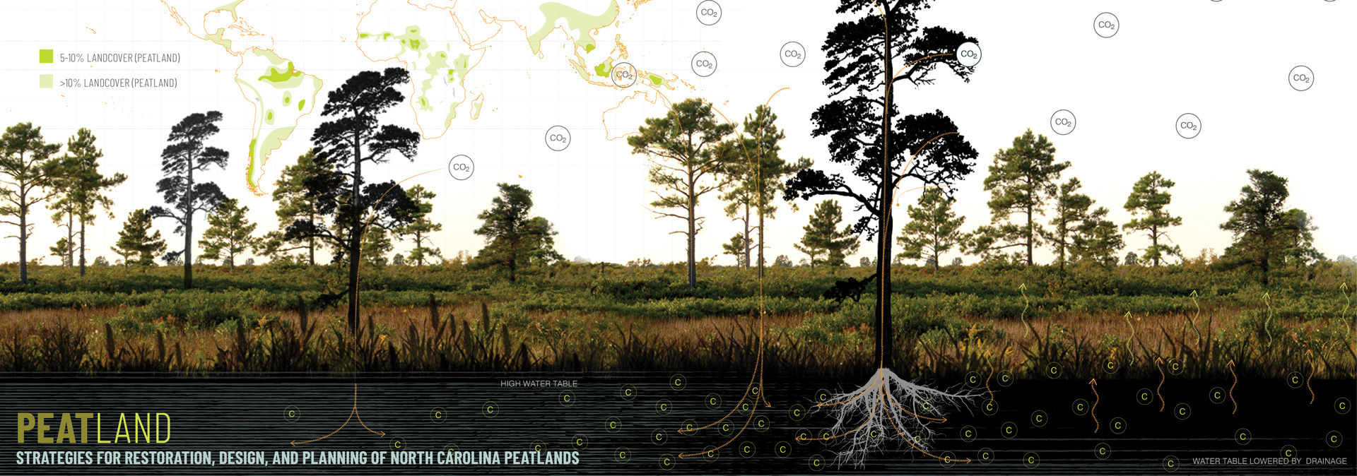 Exploring Coastal Conservation: Students and Faculty Win ASLA Awards to Preserve NC